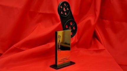 """Salzburger Filmnachwuchspreis: Der """"Simon S."""" wird am 14.11.2014 im Das Kino vergeben"""