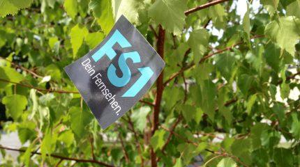 Dein Sommer bei FS1: Veränderte Bürozeiten und Sommer-Workshops