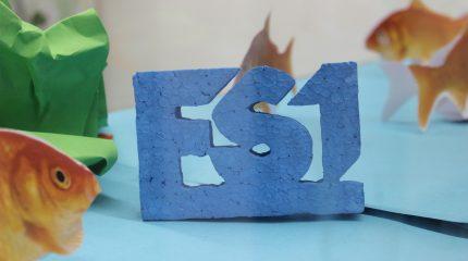FS1 fliegt aus: Büro am Freitag, 11. Dezember geschlossen