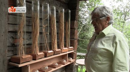 MuseumONLINE| Die Mühlen am Gasteiner Höhenweg