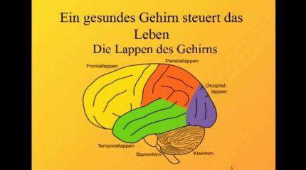 """Top Life: Gesundheitsvortrag Teil 2 zum Thema """"Lebensstil"""" immer um 13:05 und 23:05 Uhr auf FS1"""