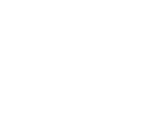 vfroe Logo