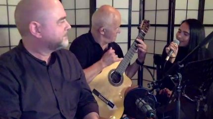 Weasel Wednesday Live Sessions | Les Belettes