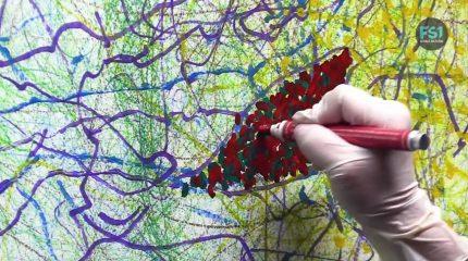 Astrid Rieder trans-Art | Dokumentarvideo: Schwungvolle Inspirationsquelle